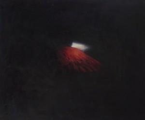 Aile, huile sur bois, 100 x 120 cm, 2012